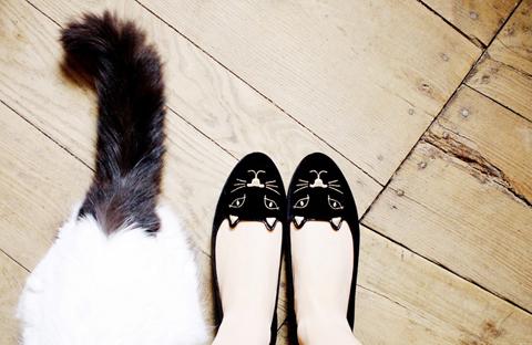 Tendência fashion: Kitty Flats, a sapatilha de gatinho
