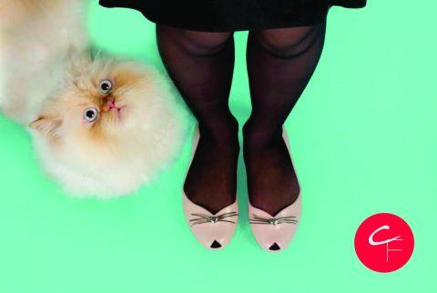 Zaxy-Cat-a-sapatilha-de-gatinho-da-Zaxy3